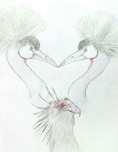 feathered beauty - Ranchos creates