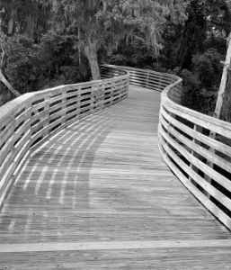 The Boardwalk in Black and White