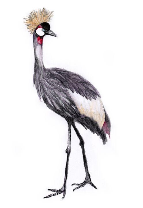 Crowned Crane - Agnieszka Guniek Baradziej