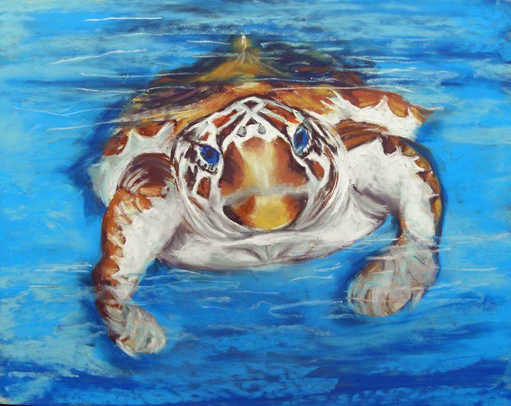 Save the Sea Turtle - Cathy E Geib Art