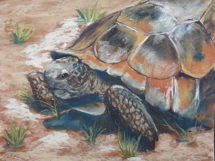 Old Man Gopher Turtle - Cathy E Geib Art