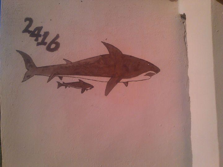 brown shark -  Mloyiden