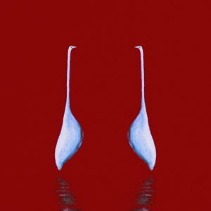 Egret Mirrored on Red Square