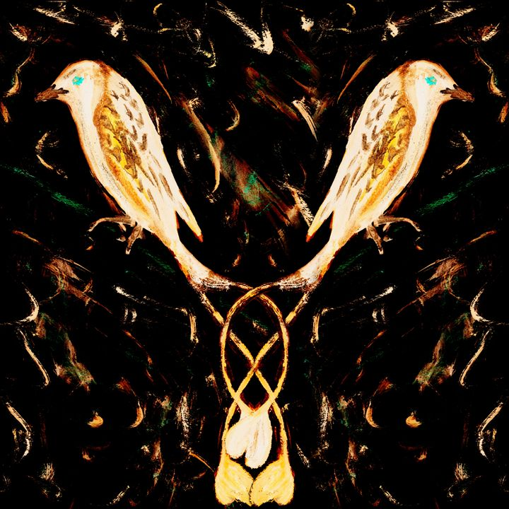 Pale Drongos - Geckojoy