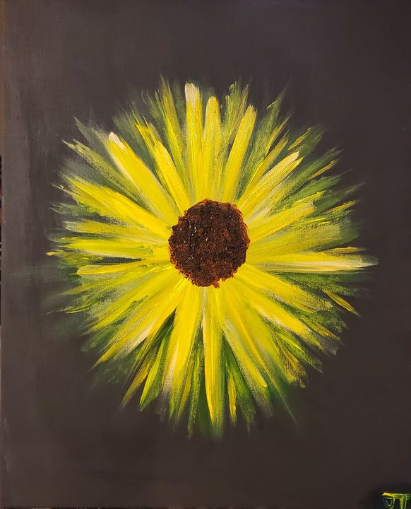 Sunflower - Texas Pi