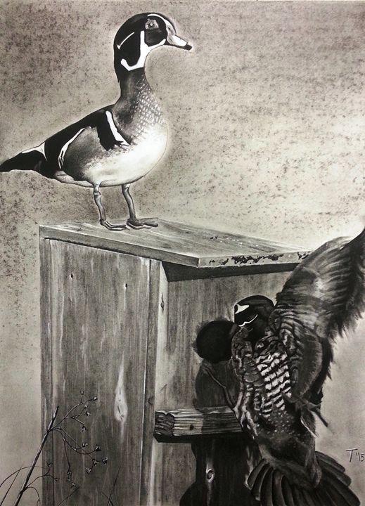 South Carolina Wood Ducks - MyMixedMedia