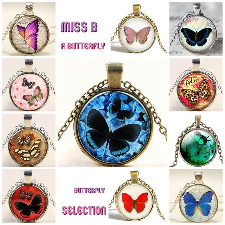 butterfly - Miss B.