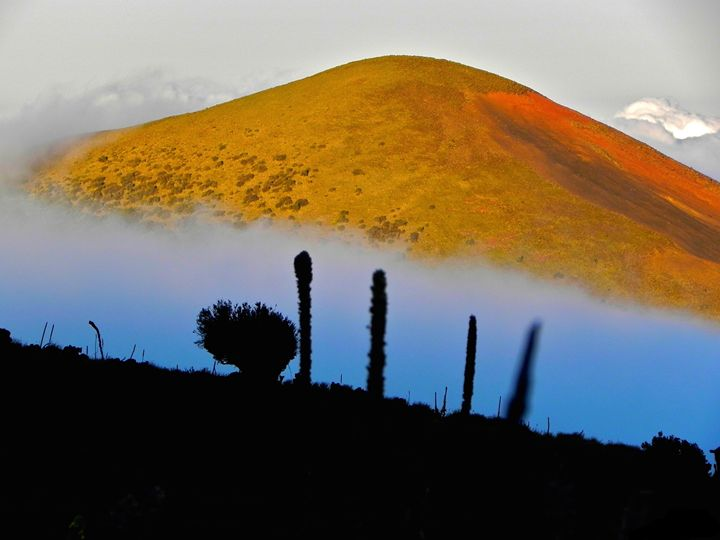 Paint The Hills - Apachula Photography