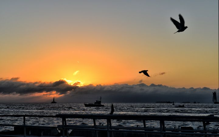 Flying & Sailing Through the Sunset - Maria Keady at Through the Lens of MTK