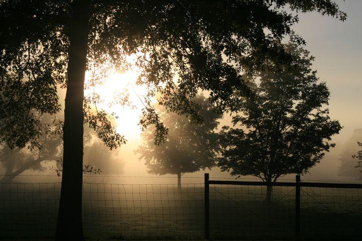 Foggy Morn - BSparks