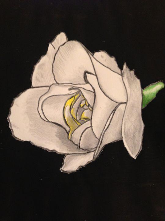 Birthday Rose - BSparks