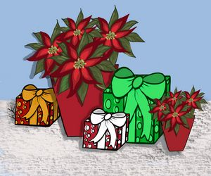 Poinsettias and Packages