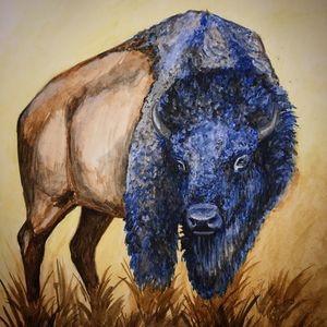 Blue Buffalo Dream