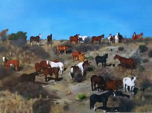 Panhandle Horses