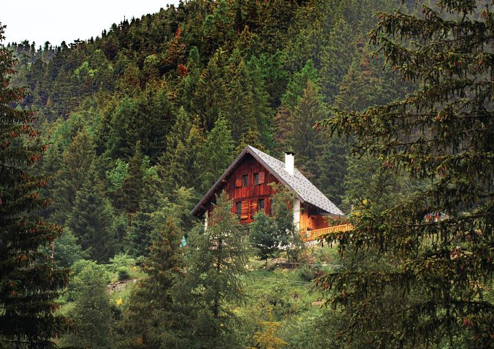Cabin In Forest Fine Art Print - Friends Always Giftshop