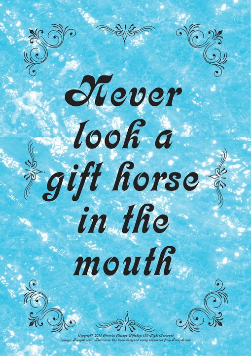 267 Never look a gift horse in the - Friends Always Giftshop