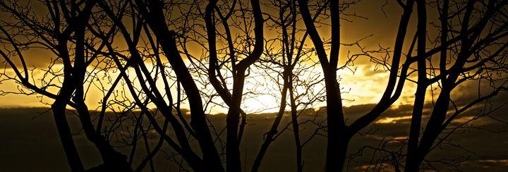 """Not Lost"" - Joshua Levi Anderson"