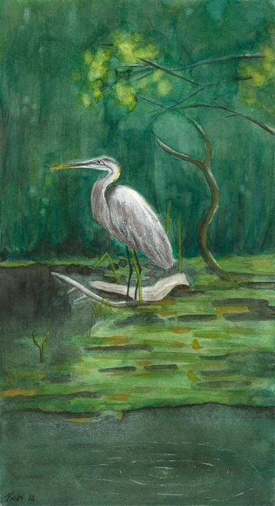 Swamp - Vicki B Littell