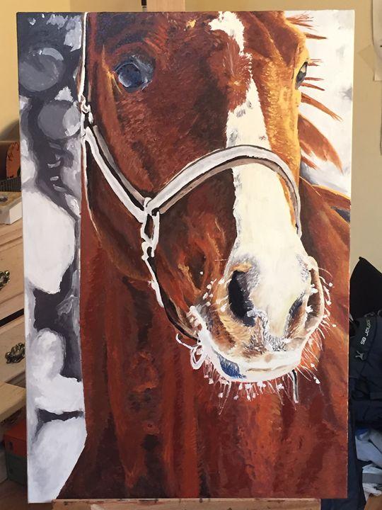 horse snow - RIGA
