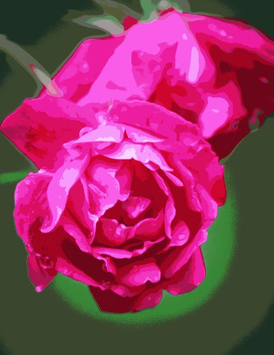 Double Mist Roses 1 - Flowers
