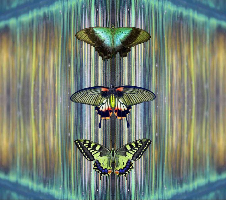 Violir - Art By Sumit Mehndiratta