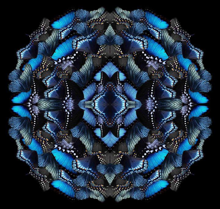 Midnight morphosis - Art By Sumit Mehndiratta