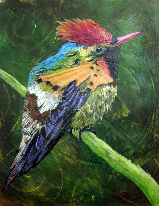 Tufted Coquette Hummingbird - Tami Booher Appalachian Nature Painter