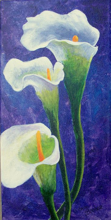 Cala Lily's on purple - Tami Booher Appalachian Nature Painter