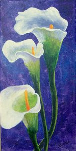Cala Lily's on purple