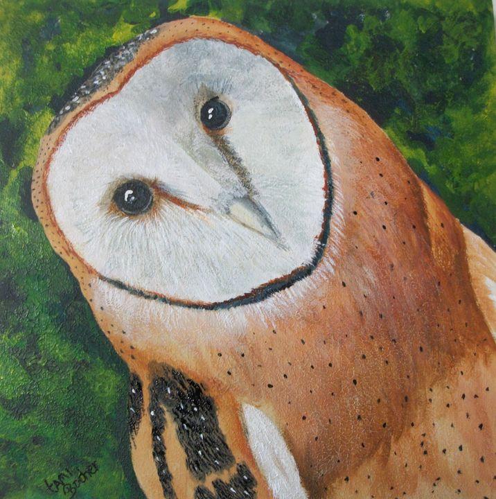 Barn owl - Tami Booher Appalachian Nature Painter