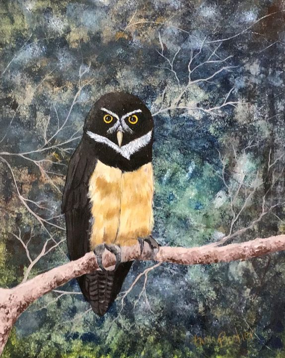 Spectacled Owl - Tami Booher Appalachian Nature Painter