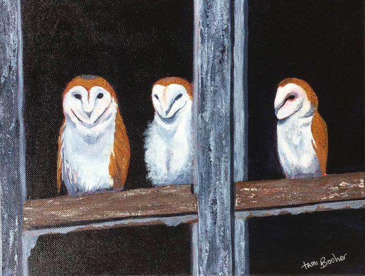 Barn owl family - Tami Booher Appalachian Nature Painter
