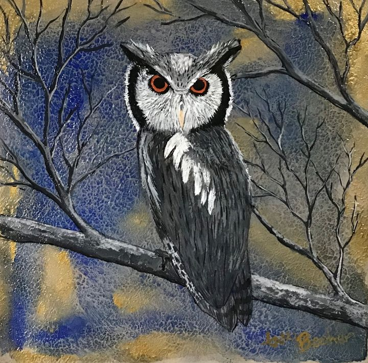 Northern white faced owl - Tami Booher Appalachian Nature Painter