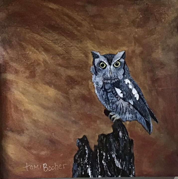 Eastern Screech Owl - Tami Booher Appalachian Nature Painter