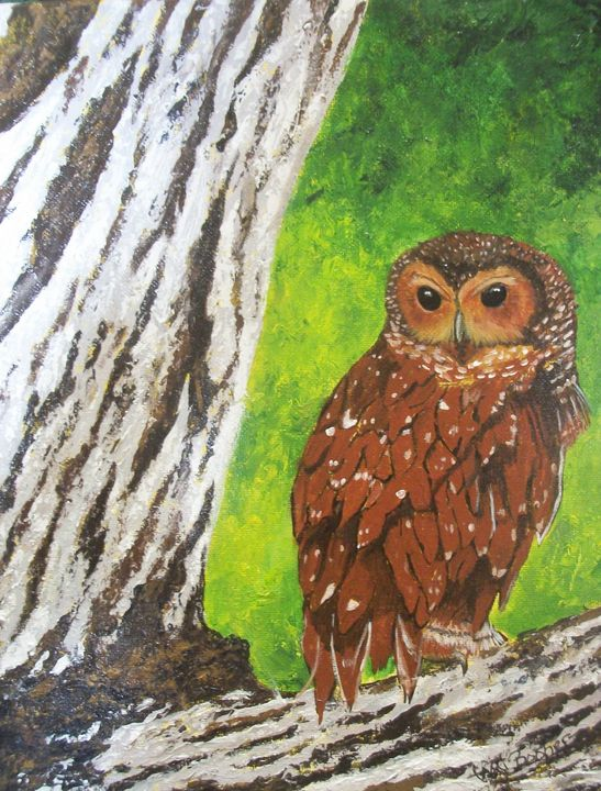 Wood Owl - Tami Booher Appalachian Nature Painter
