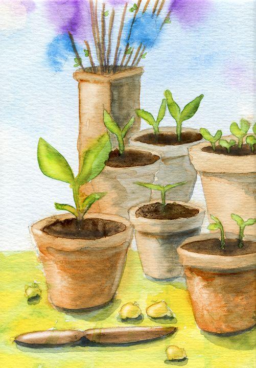 Garden pots - Christina Rahm Art