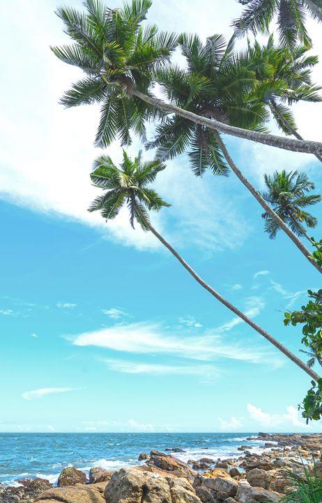 Tropical rocky beach - Christina Rahm Art