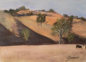 Hills and Shadows, Molesworth #2