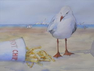 Seagull with Hot Chips
