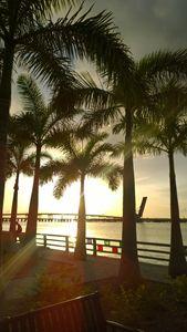 Blinding Dawn