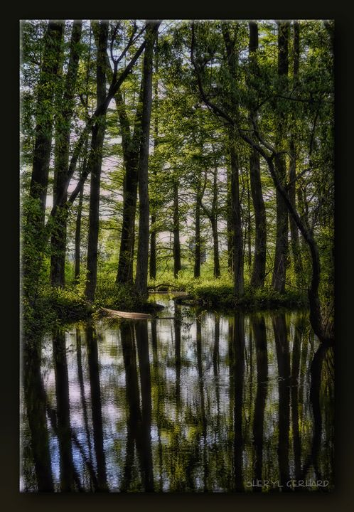 At the Pond - Sheryl Gerhard