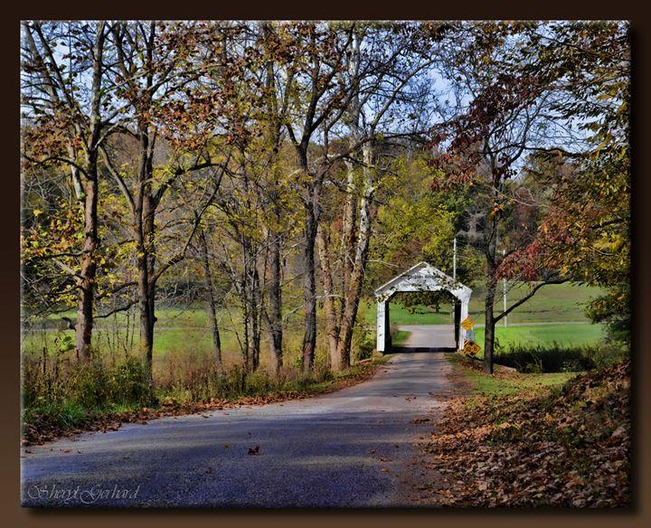 Phillips Bridge Road - Sheryl Gerhard