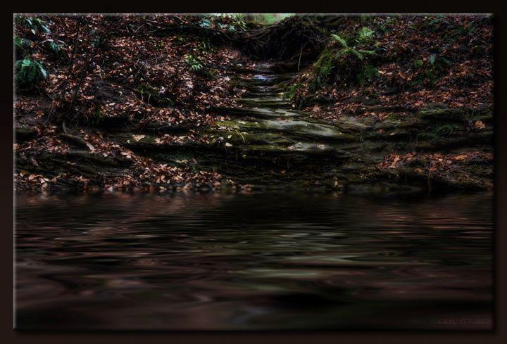 Steps to Reflection - Sheryl Gerhard