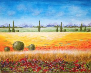 Cypresses in a field