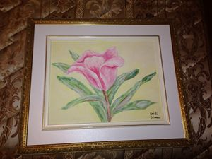 My pink flower