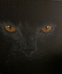 """cat """"Musya"""""""