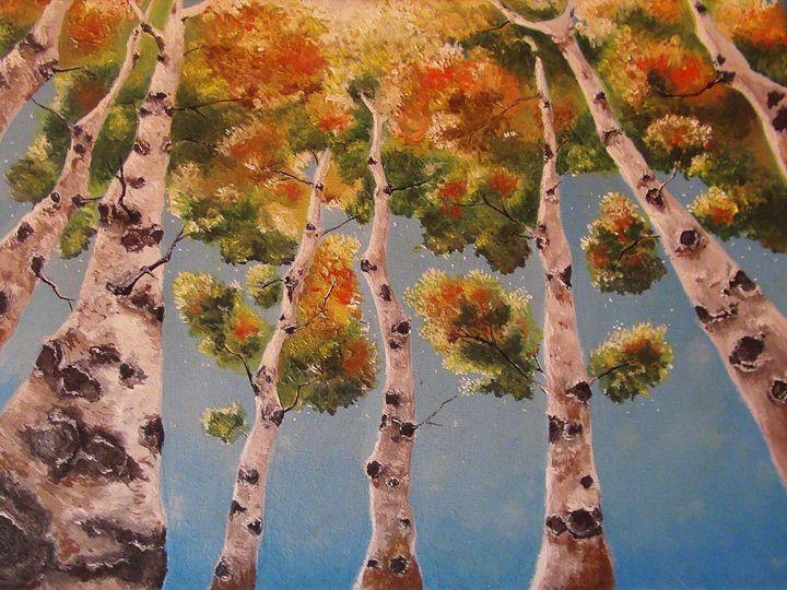 Birch Forest - ArtofFreedom