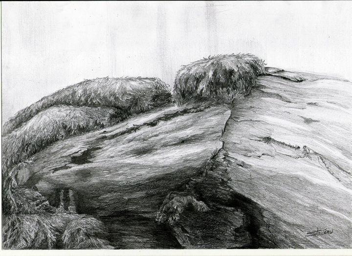 old tree - artmishel