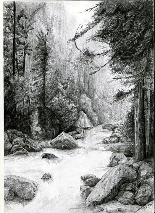 forest river - artmishel