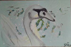 duckyswan